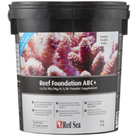 Red Sea Skeletal Elements Foundation ABC+